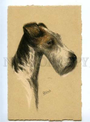 140788 Wire-haired Fox Terrier by GAULI Vintage colorful PC
