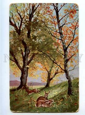 178607 HARE HUNTING early summer vintage postcard