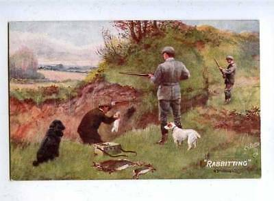 182922 Rabbit hunting dogs by Drummond Vintage TUCK postcard