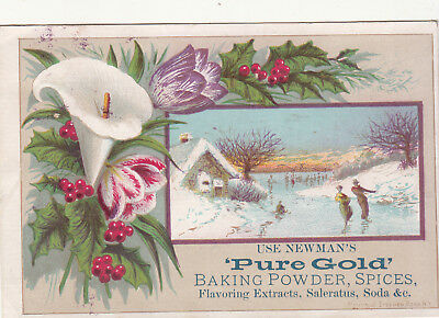 Newman's Pure Gold Baking Powder Spices Ice Skating Mansfield Adrian MI c1880s