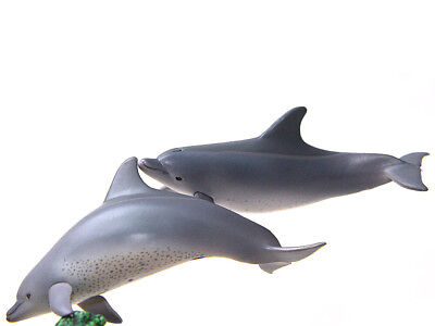 Kitan Club Nature Techni Color Bonin Ogasawara Islands Bottlenose Dolphin figure