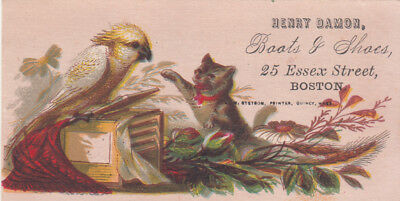 Henry Damon Boots and Shoes Boston Cat and Canary Kitten Vict Card c1880s