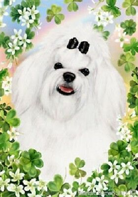 Large Indoor/Outdoor Clover Flag - Maltese 31041