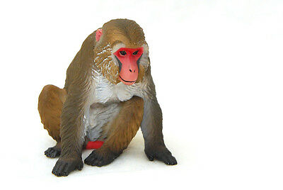 Kitan Club Nature of Japan animal figure Japanese macaque Snow Monkey US seller