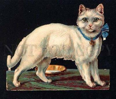 032688 White CAT w/ bow Vintage paper doll