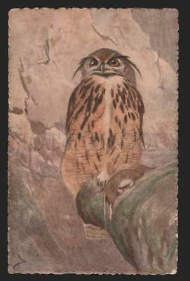 117126 OWL Vintage RUSSIAN RARE Artist HAND MADE Water Color