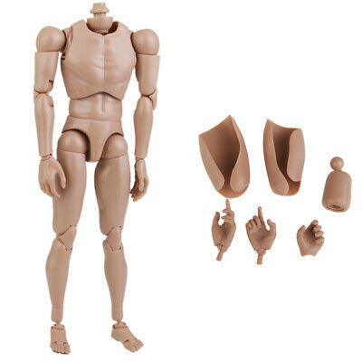 1//6th Scale Muscular Action Figure 12inch Male Nude Body for TTM18 TTM19 Head