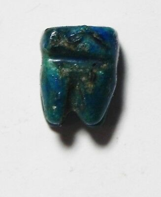 ZURQIEH -as5704- ANCIENT EGYPT, RARE TOOTH AMULET  . 600 - 300 B.C