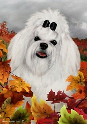 Large Indoor/Outdoor Fall Flag - Maltese Pup 13041