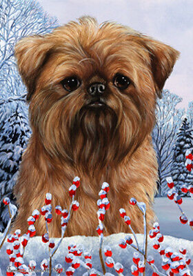 Garden Indoor/Outdoor Winter Flag - Brussels Griffon 151281