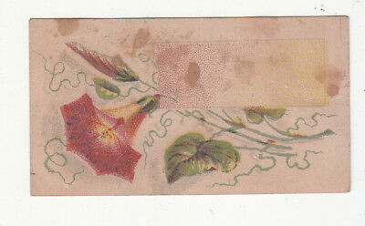 A A Merrick & Co Rehumatism Cure Neuralgia Red Flower Vict Card c1880s
