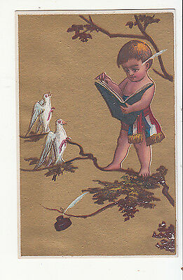 Naked Boy Reading Book to Birds Ink Well Feather No Advertising Vict Card c1880s