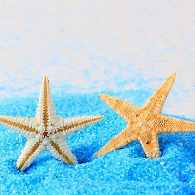10/20/50X Mini Starfish Sea Star Shell Beach Wedding Home Decor DIY Craft TU