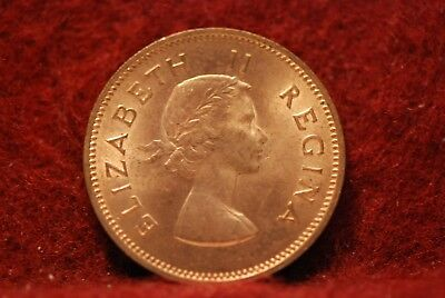 South Africa, 1955 1/2 Penny, KM45, Uncirculated+, No Reserve,             mab10