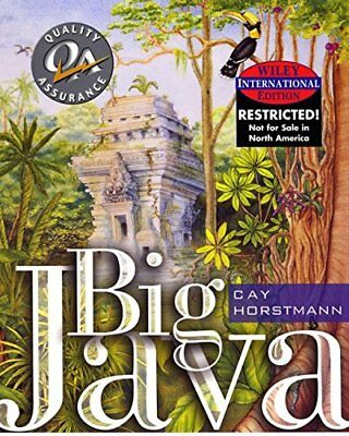 Big Java by Horstmann, Cay S. Paperback Book The Cheap Fast Free Post
