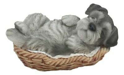 "Realistic Miniature Schnauzer Puppy Sleeping In Wicker Basket Figurine 7""Long"