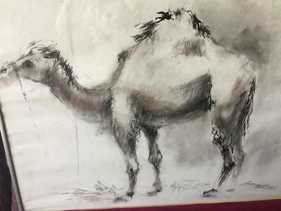 Orig.kalinowsky Camel Animal Charcoal/ink Drawing Framed Listed Artist