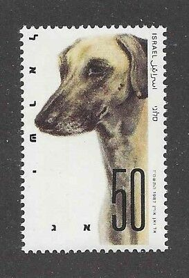 Art Portrait Postage Stamp SALUKI SLOUGHI Israel Native Dog Breeds 1987 MNH