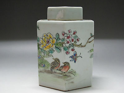 China Famille Rose porcelain tea caddy Painted Flower Peacock Bird Butterfly pot