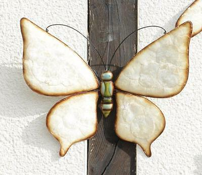 G2074: Noble Decor Butterfly with Shell Inserts, Wall Deco Softshell Butterfly