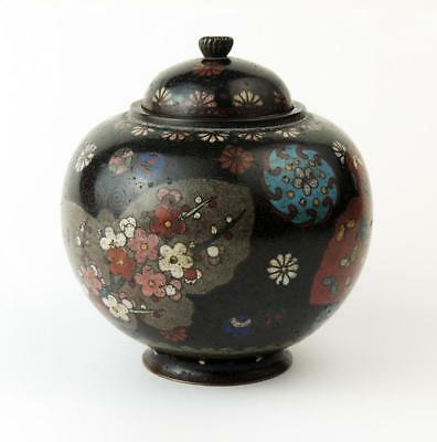 JAPANESE MEIJI PERIOD CLOISONNE POT & COVER c1900 Black Enamel