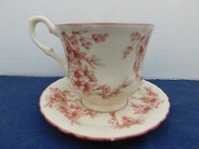 Cream Color Red Floral Porcelain Tea Cup & Saucer China
