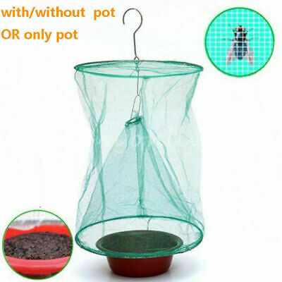 SUMMER GREEN FLY Trap Sunshine Spot Mosquito Catch Capture Traping Bug Net  Tree