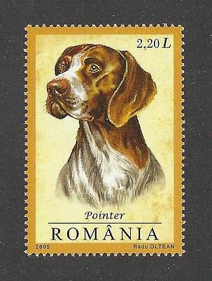 Dog Art Head Study Portrait Postage Stamp ENGLISH POINTER Romania 2005 MNH