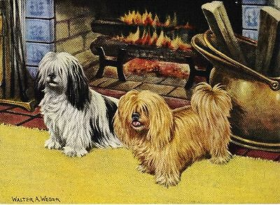 Lhasa Apso - Vintage Color Dog Print - MATTED