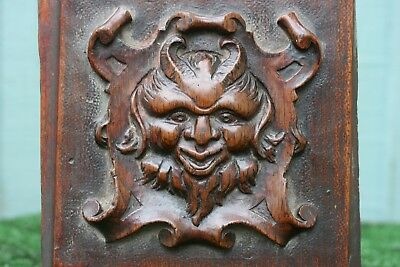 SUPERB MID 19thC GOTHIC WOODEN WALNUT CARVED PANEL: GROTESQUE DEVIL HEAD c1850s