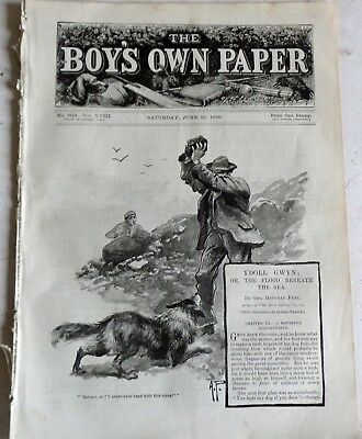 Victorian June 13 1896 Boys Own Paper: Mandolins: Sea Fishing: Antarctic Discoun