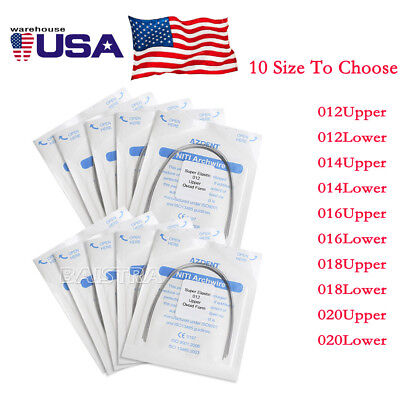 UPS 10 Pks Dental Orthodontic Super Elastic Niti Round Arch Wire Ovoid Form
