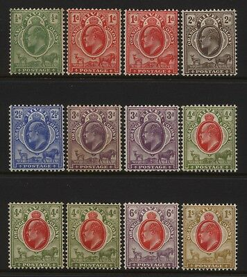 Orange River Colony Collection 12 KEVII Values Mounted Mint
