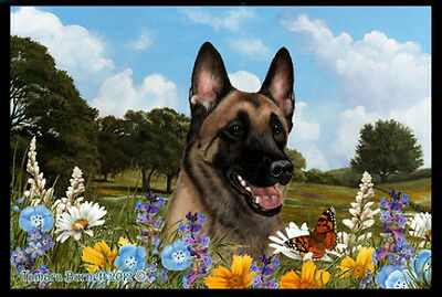 Indoor/Outdoor Summer Floor Mat - Belgian Malinois (TB) 39251