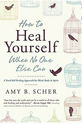 How to Heal Yourself When No One Else Can: A Total Self-Heal... by Scher, Amy B.