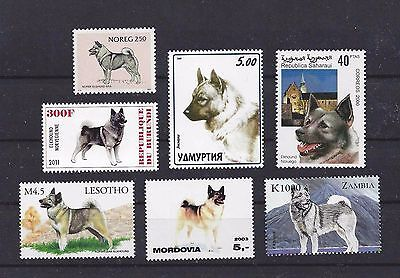 Dog Art Head & Body Study Postage Stamp Collection NORWEGIAN ELKHOUND 7x MNH