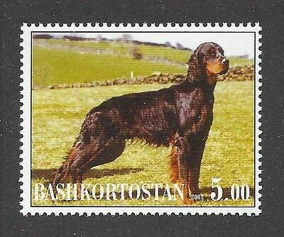 Dog Photo Full Body Portrait Postage Stamp GORDON SETTER Bashkortostan 2001 MNH