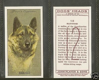 1940 Reissue Arthur Wardle Dog Art Head Player Cigarette Card NORWEGIAN ELKHOUND