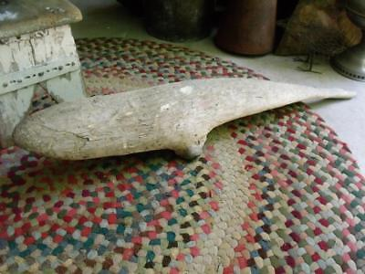 VERY COOL Old Primitive Natural Found Piece of Driftwood That's WHALE Shaped !