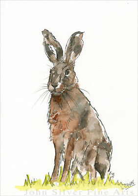 HARE CLASSIC PORTRAIT ORIGINAL WATERCOLOUR PAINTING by UK ARTIST LESLEY SILVER.