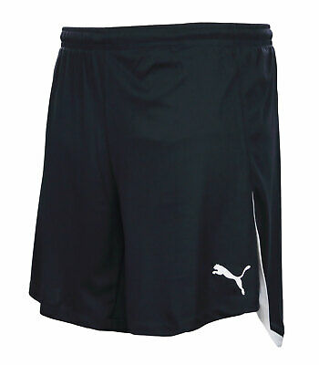 Puma Speed Shorts L XL XXL kurze Hose Laufhose Sporthose Trainingshose Fitness