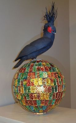 "BLACK PALM COCKATOO on ILLUMINATED ""FOILED"" MOSAIC ORB"