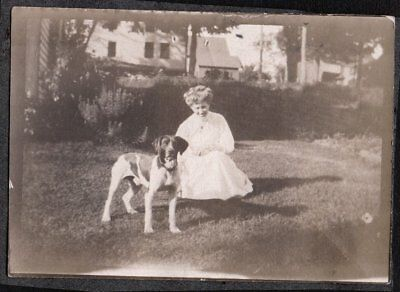 Vintage Photograph 1900's Woman Fashion Pointer Hunting Dog Puppy Pup Old Photo