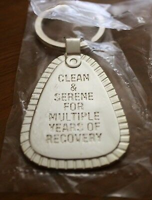 Na Silver  Metal Key Chain Clean & Serene Multiples  Narcotics Anonymous