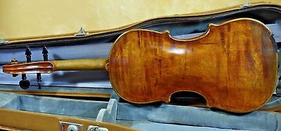 A Beautiful Fine old Italian Violin Bernardus Calcanius 1749