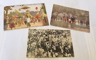 Antique 3 Postcard Lot 1927 Kandy Elephant Ceylon Buddhist Esala Perahera Parade