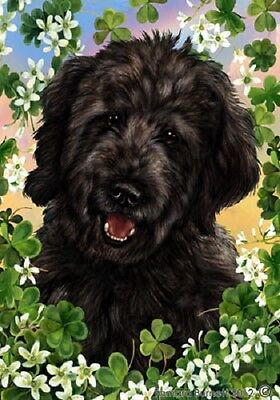 Large Indoor/Outdoor Clover Flag - Black Goldendoodle 31199