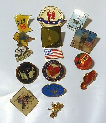 Lot of 15 Outstanding DAV Pins for States of FL, NM, MN Angels Rare Manatee Pin