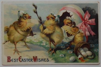 Antique Postcard Embossed Best Easter Wishes Chicks Eggs Daisies Anthropomorphic