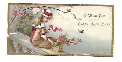 I wish You a Happy New Year Girl w Basket Sitting Flowers Vict Card c1880s